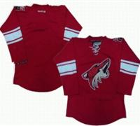 nhl Phoenix Coyotes blank red jerseys